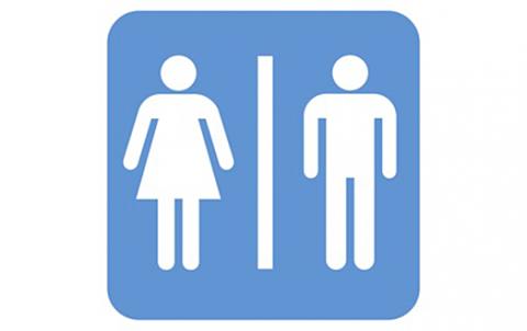 световният ден на тоалетната