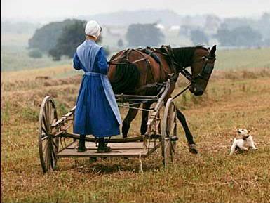 Амишите не болдуват от аутизъм и алергии, няма ваксини